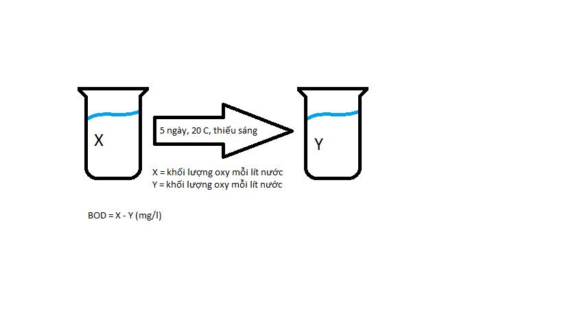 Hiểu thêm về các chỉ số ô nhiễm nước thường dùng BOD, COD, TSS, Coliforms